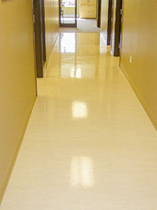 Beautiful, glistening office hallway after a high speed buffing.